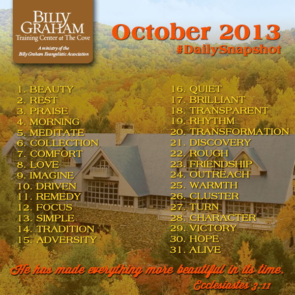 BGTC DailySnapshot Oct2013