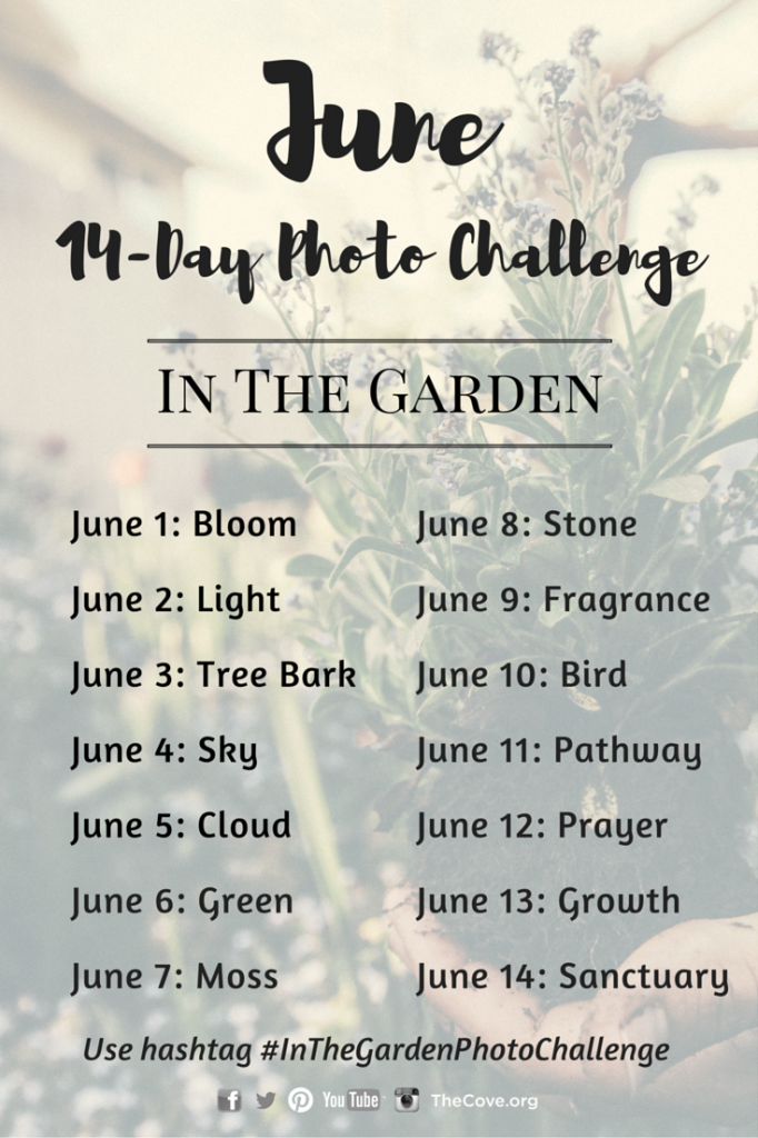 14-Day_June_Photo_Challenge_Pinterest_and_Blog