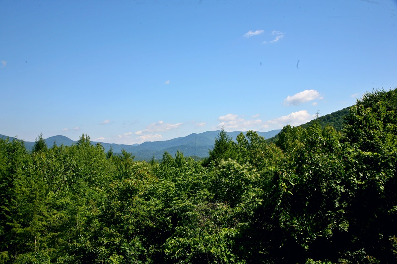 Mountain_View(small)