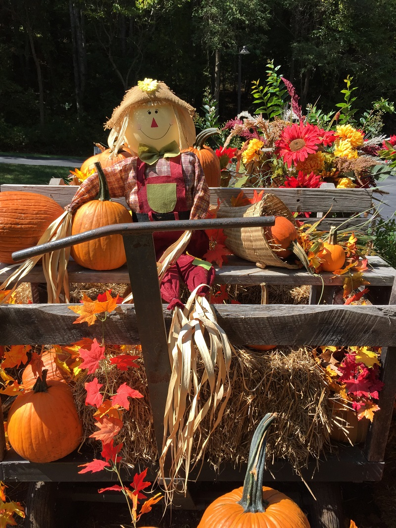 sm blog Fall decorations 2017 near gatehouse (4)